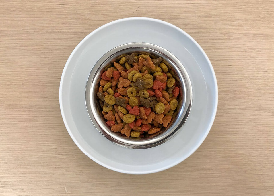 A top view of a bowl of water with a bowl of pet food sitting inside it to create a moat.