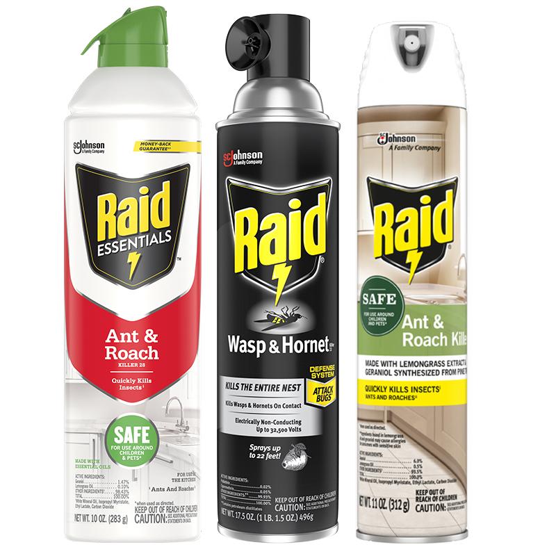 Raid-Image-2-updated (1)