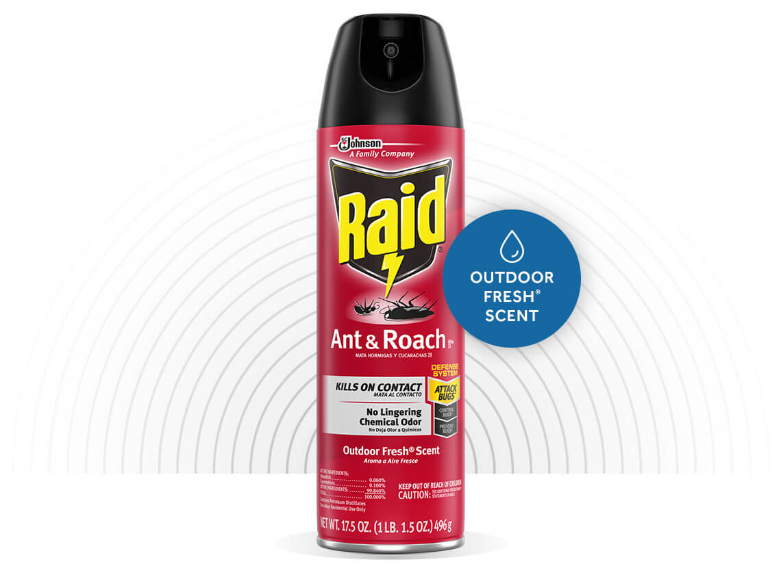 Raid-Ant-and-Roach-Killer-26-Hero-1-EN-2X