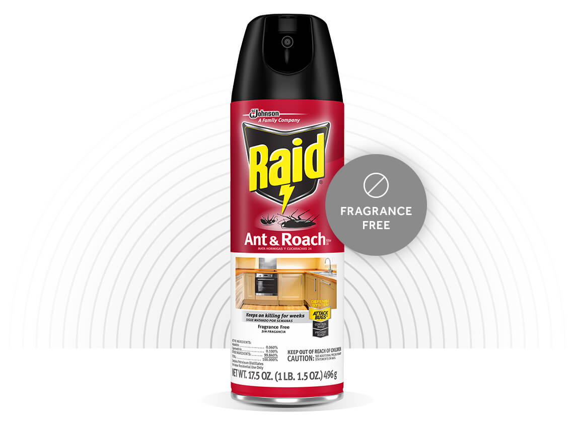 Raid-Ant-and-Roach-Killer-26-Hero-5-EN-2X