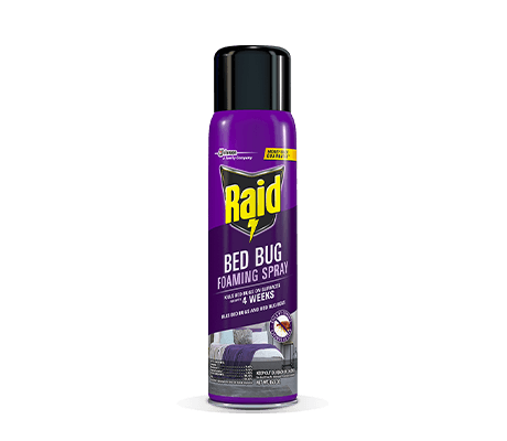 RAID BED BUG FOAMING SPRAY