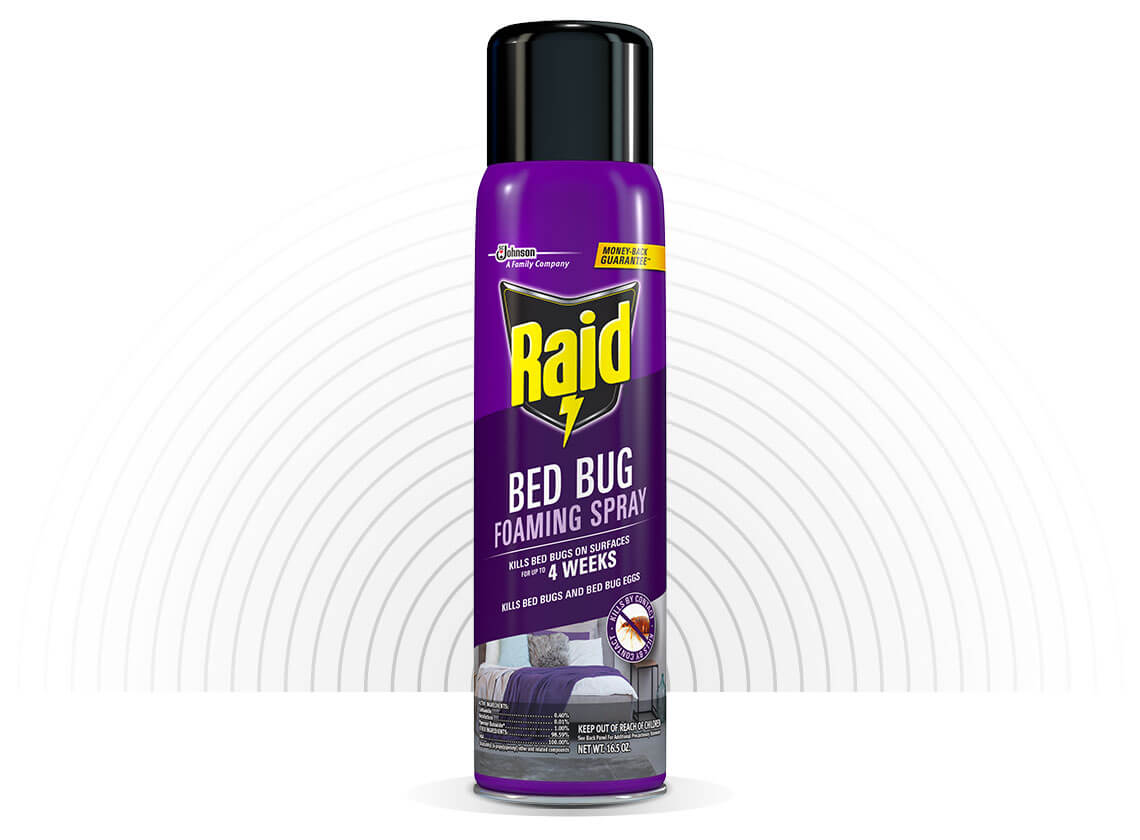 Raid-Bed-Bug-Foaming-Spray-Hero-1-2X